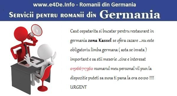 anunturi-servicii-in-germania 2016